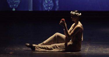 apple-708