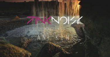 pink-noisy-ani-kuni-696x356.jpg